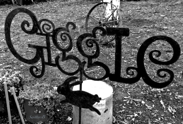 giggle-yard art-garden-laughter-health-photo-SwittersB