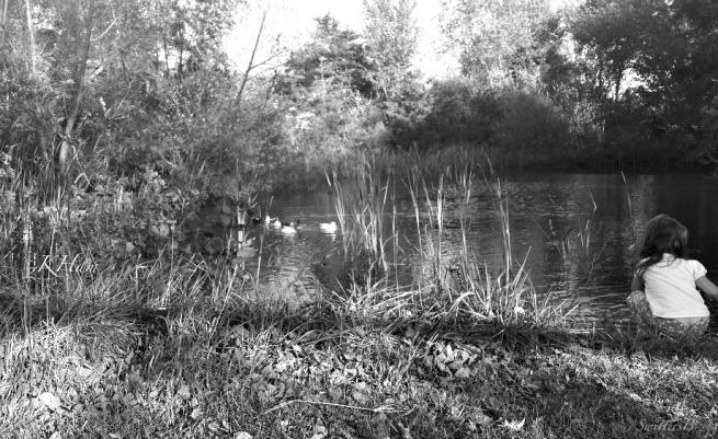 girl farm pond CKH SwittersB Photography