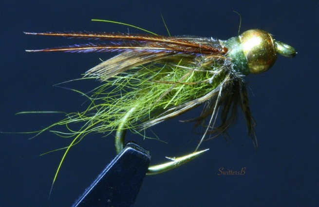 green + BH pupa-fly tying-SwittersB-macro photography