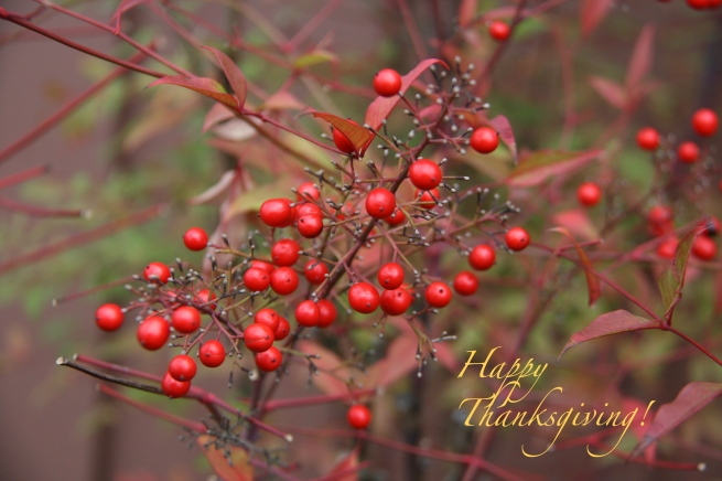 Happy Thanksgiving 2014-SwittersB