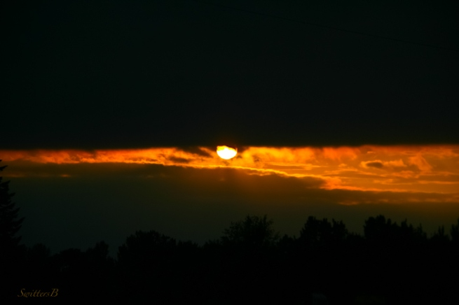 Setting sun+dark clouds-sun-photography-SwittersB