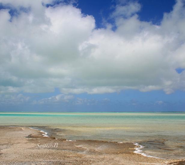 flat-tide-sky-xmas is-SwittersB