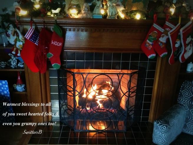 SwittersB, Christmas 2014