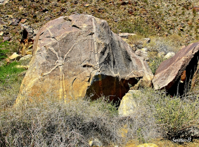 rock-spider-tahquitz canyon-desert-canyon-SwittersB