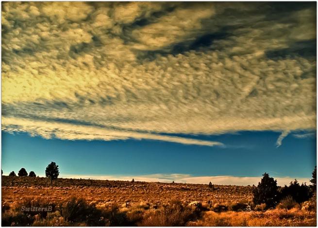 High Desert-Oregon-SwittersB