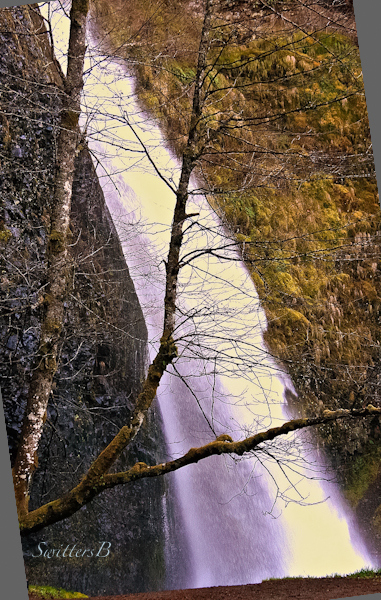 Horsetail Falls-Oregon-waterfall-Gorge-Swittersb