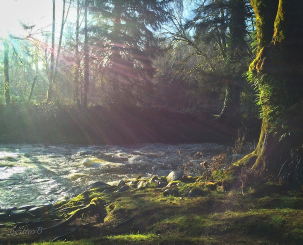 Oregon-sunrays-river-morning-dreamy-SwittersB