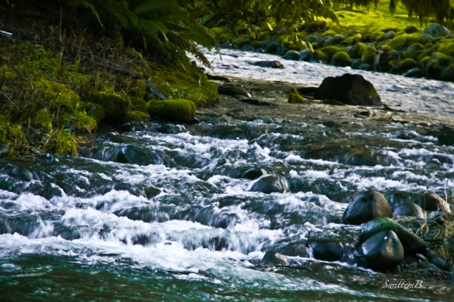 rapids-Oregon-stair steps-river-salmon-Oregon-SwittersB-photograhy
