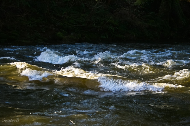 rapids-river-off color-SwittersB-Oregon
