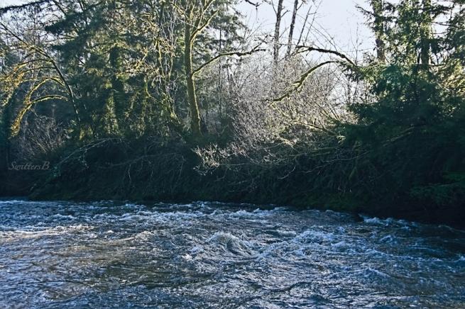 river-rapids-low sun-Oregon-SwittersB