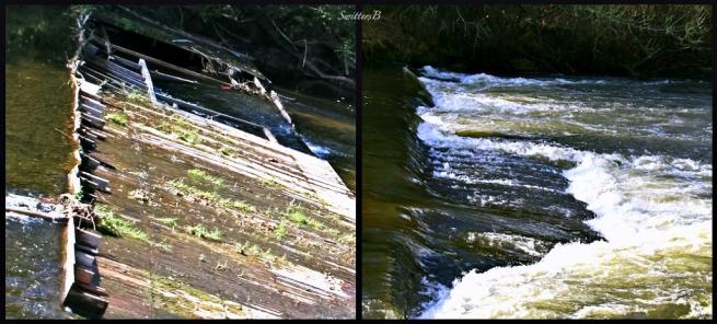 spillway-fish-Salmon River-Oregon-fish habitat-photography, SwittersB