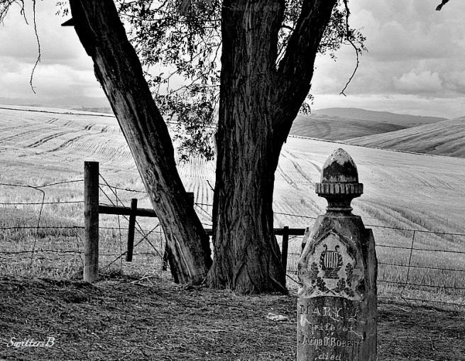 cemetery-Oregon-Vista-SwittersB-pioneer