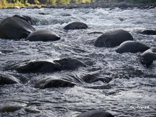 boulders-Sandy River-Oregon-SwittersB-nature