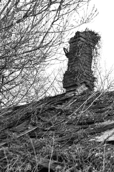 chimney-crumbling-roof-old-rural-Oregon-SwittersB