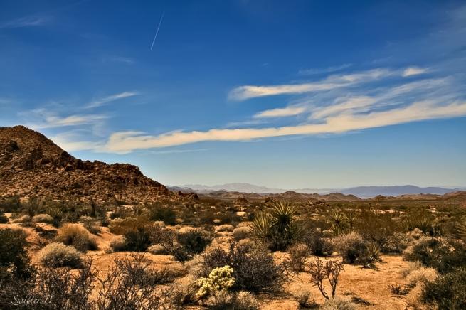 SwittersB, Mojave Desert