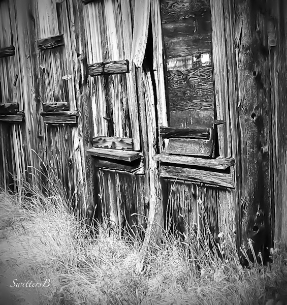 rustic building-rural-boards-Oregon-SwittersB