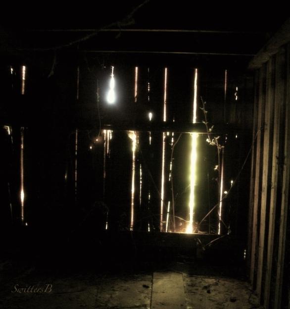 Boards-Barn-BackLit-SwittersB
