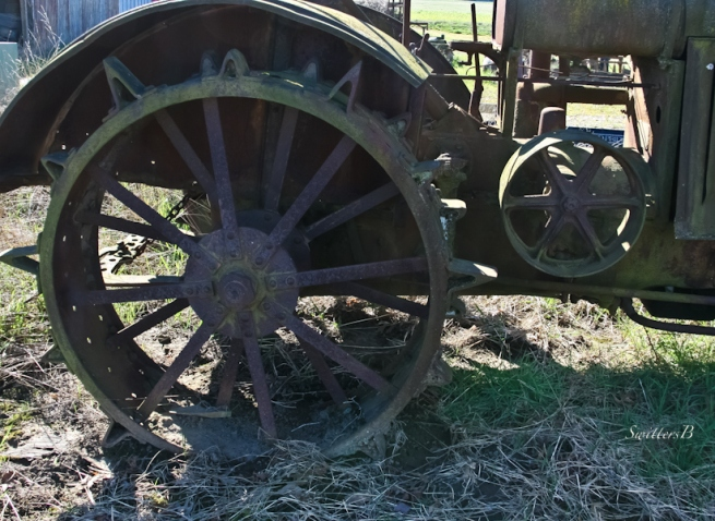 farm wheel-Oregon-rural-Oregon-SwittersB