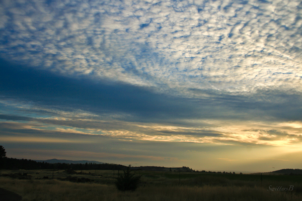 morning sky-desert-Oregon-Photography-SwittersB-5525
