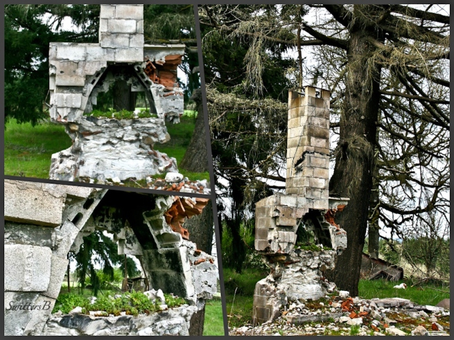 Old Chimney-Fire-Oregon-photo collage-SwittersB