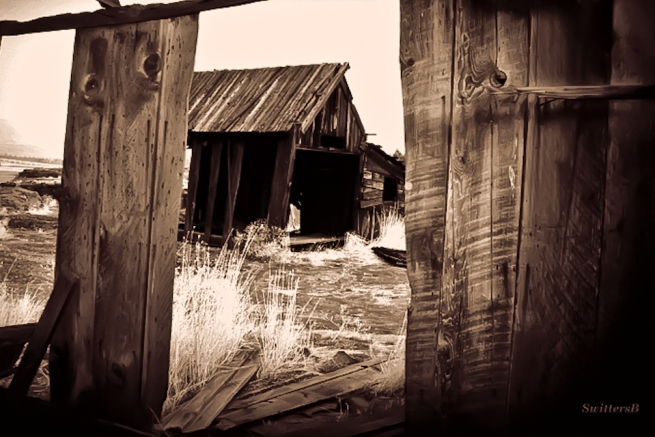 old house-rural-Oregon-lumber-texture-SwittersB