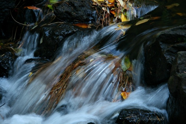 rapids-stream-photography-Oregon-SwittersB