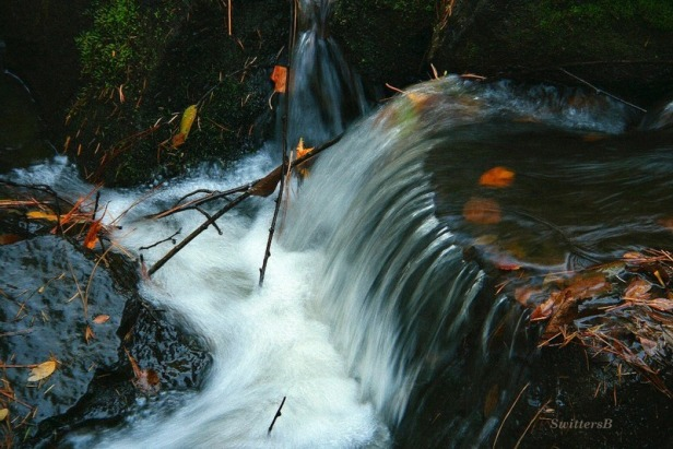 rapids-swittersb-river-Oregon