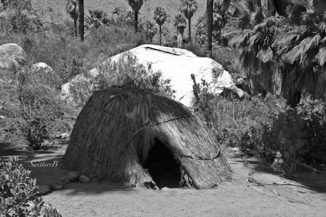 Agua Caliente Cahuilla-shelter-fronds-Andreas Canyon-replica-SwittersB