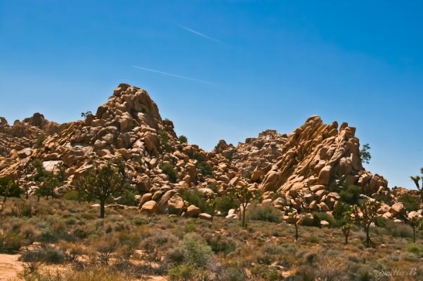 -Desert-landscape-rocks-Joshua Tree-Queen Valley-SwittersB