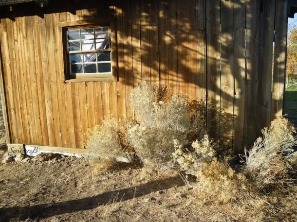 old cabin-setting sun-shadows-rustic-Oregon-SwittersB