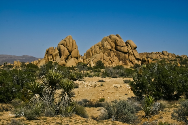 rock formation-desert-Joshua Tree NP-California-SwittersB