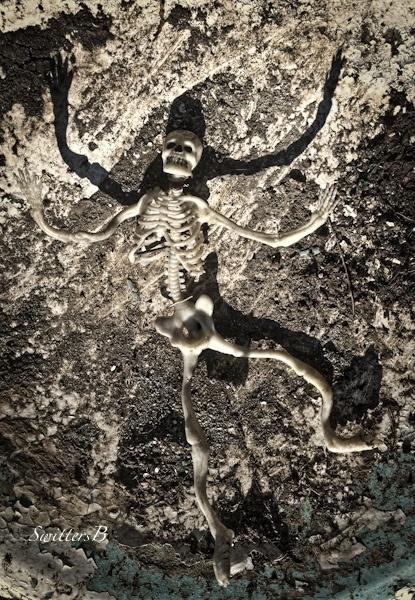 sun-shadow-worship-skeleton-SwittersB