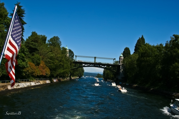 Montlake Cut-bridge-SwittersB-Seattle-boats