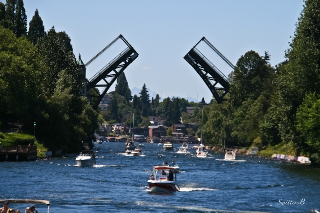 Montlake Cut-Seattle-boats-SwittersB