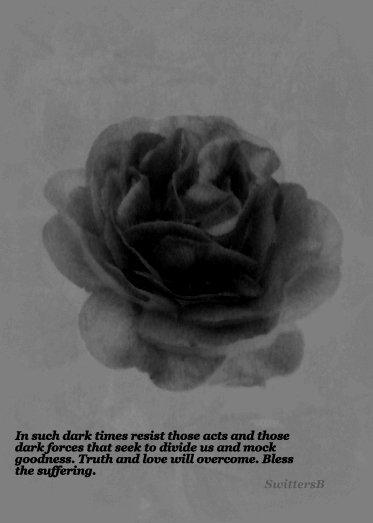 Roses-darkness-kindness-love-SwittersB