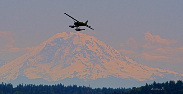 sea plane-mt. rainier-SwittersB-Seattle