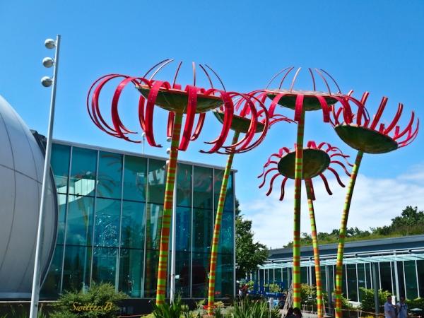 Seattle Center, Art, Flowers, SwittersB