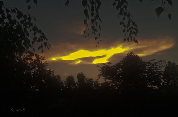 sunset-opening-clouds-backyard-SwittersB