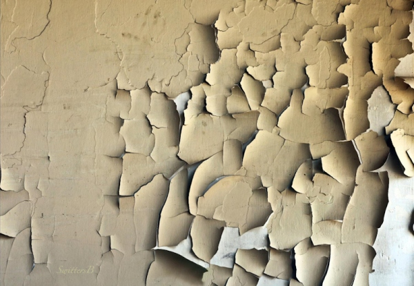 peeling paint-wall-chips-photo-SwittersB