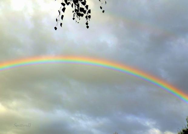 Portland-Rainbow-Weather