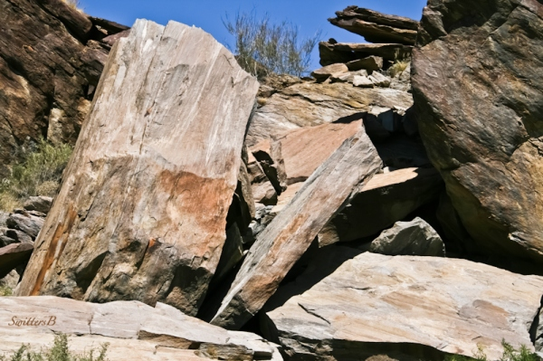 sliced rock-Andreas Canyon-rocks-SwittersB