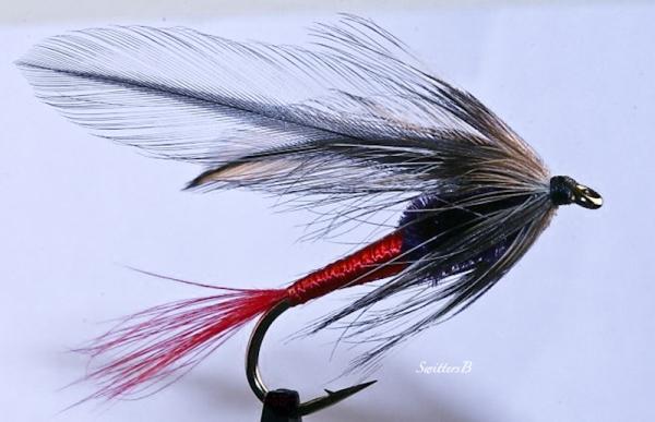 spruce fly-SwitterB-macro-fly pattern