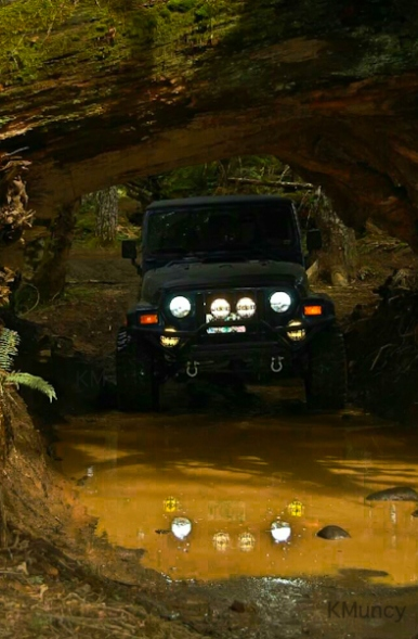 Underpass-puddle-Jeep-Oregon-SwittersB