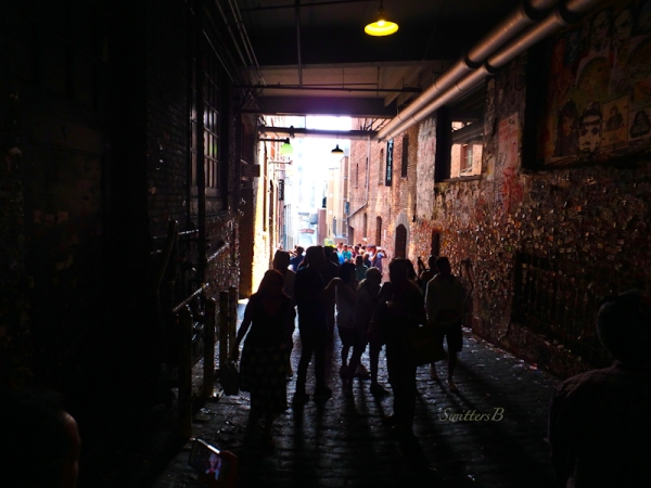 gum wall alley, SwittersB