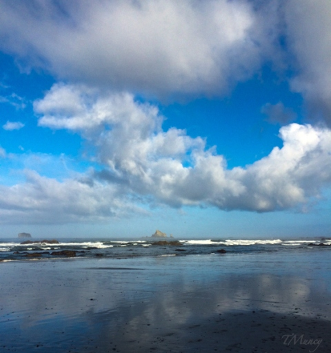 LaPush Beach, Washington, ocean, TMuncy, SwittersB