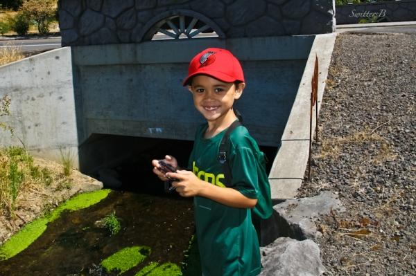 Maddox-Harry's Bridge-hiking-SwittersB