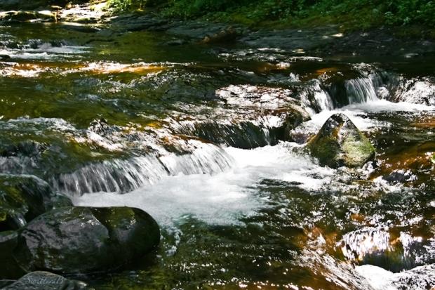 multnomah creek-rapids-stream-SwittersB