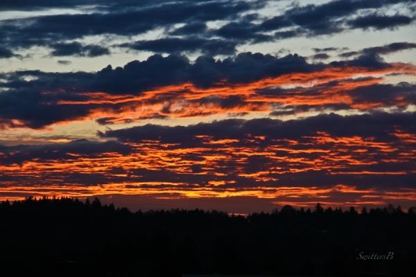 Portland-Oregon-sunset-Winter-skyline-SwittersB