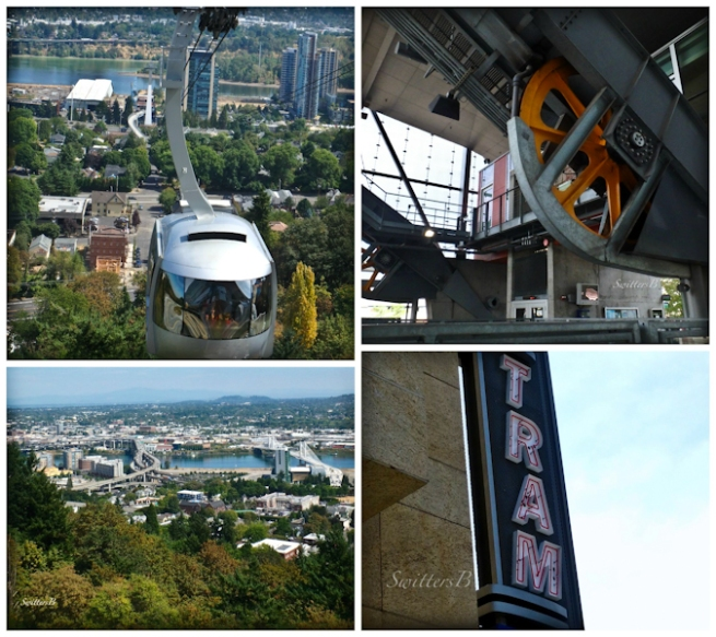 Tram-OHSU-SwittersB-collage