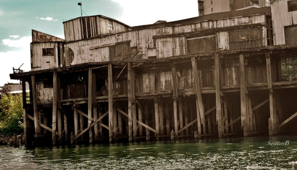 Portland-Cenntennial Mills-old dock-Willamette-SwittersB